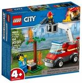 Конструктор LEGO City 60212 Пожар на пикнике