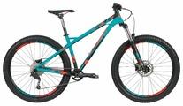 Горный (MTB) велосипед Format 1313 Plus (2019)