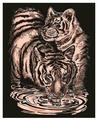 Гравюра KSG Тигры (0610) медная основа