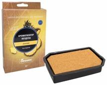 Kraft Ароматизатор для автомобиля Organic Sweet&tasty Ананас 65 г