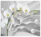 Фотообои Design Studio 3D Белая орхидея на объемном фоне