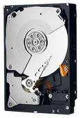 Жесткий диск Western Digital WD Caviar Black 5 TB (WD5002AALX)