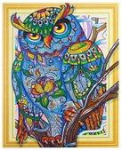 Color Kit Набор алмазной вышивки с фигурными стразами Мудрая сова (FKU015) 40х50 см