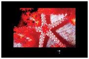 """Телевизор AquaView 26 Smart TV 26"""""""