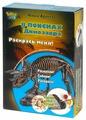 """Набор для раскопок Город Игр Юный Археолог. В Поисках Динозавра """"Раскрась меня!"""""""