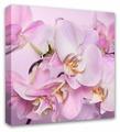 Картина Симфония Орхидея