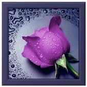 Алмазная живопись Набор алмазной вышивки Сиреневая роза(АЖ-16) 22х24 см
