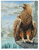 Maia Набор для вышивания Орел 3D 60 х 45 см (01229-5678000)