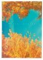 Ежедневник Listoff Пейзаж. Краски природы недатированный, А5, 152 листов