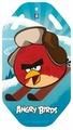 Ледянка 1 TOY Angry Birds (Т57212)