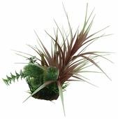 Искусственное растение ArtUniq Офиопогон красный с бамбуком 20 см