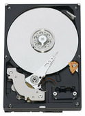 Жесткий диск Western Digital WD RE2 500 GB (WD5001ABYS)