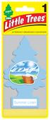 Little Trees Ароматизатор для автомобиля U1P-10574-RUSS Летняя свежесть 12 г
