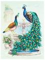 Чудесная Игла Набор для вышивания Павлины 30 x 40 см (130-001)