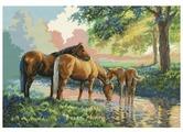 Белоснежка Набор для вышивания Скакуны на водопое 52,5 x 36 см (4162)