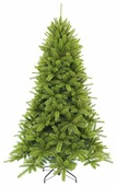Triumph Tree Сосна Бишон
