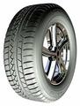Автомобильная шина Petlas Snow Master W651 205/50 R17 93V зимняя