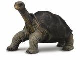 Фигурка Collecta Абингдонская слоновая черепаха 88619