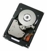 Жесткий диск IBM 49Y1876