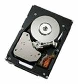 Жесткий диск IBM 90P1310