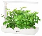 Набор для выращивания VegeBox Настольная садовая ферма