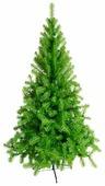 Green Trees Ель Восточная