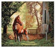 Dimensions Набор для вышивания Mare and Foal (Лошадь с жеребёнком) 36 х 30 см (35260)