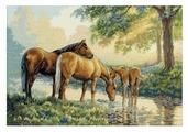 Dimensions Набор для вышивания Horses by a Stream (Лошади у источника) 41 х 28 см (35174)