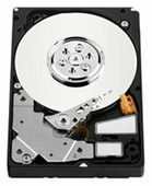 Жесткий диск Western Digital WD S25 300 GB (WD3000BKHG)