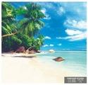 Фотообои бумажные Симфония Райский уголок 2.1х2м