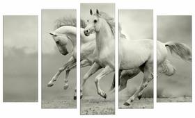 Модульная картина Картиномания Белые лошадки