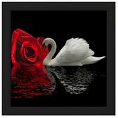 Алмазная живопись Набор алмазной вышивки Белый лебедь (АЖ-422) 55х50 см