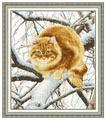 Золотое Руно Набор для вышивания Рыжий кот 32,4 х 38 см (К-010)
