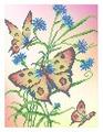 Канва для вышивания с рисунком Каролинка Бабочки и васильки КББ-4005 18.5 х 24.5 см