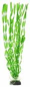 Искусственное растение BARBUS Валлиснерия спиральная 50 см
