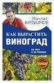 """Курдюмов Н.И. """"Как вырастить виноград на Юге и на Севере"""""""