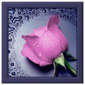 Алмазная живопись Набор алмазной вышивки Розовая роза (АЖ-17) 22х24 см