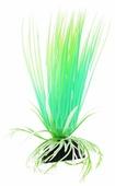 Искусственное растение BARBUS Акорус светящееся 10 см