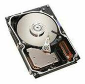 Жесткий диск Lenovo 40K1039
