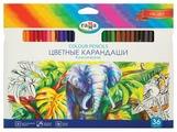 ГАММА Карандаши цветные Классические 36 цветов (050918_05)