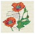 Канва для вышивания с рисунком Alisena Маки вышивка бисером В1148 20 х 20 см