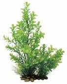 Искусственное растение ArtUniq Прозерпинака 30 см
