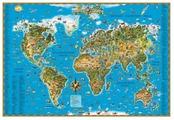 Карты и атласы Карта настенная DMB Мир 450 123141