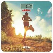 Весы ARESA SB-310