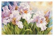 Алиса Набор для вышивания крестиком Белые ирисы 40 х 27 см (2-36)