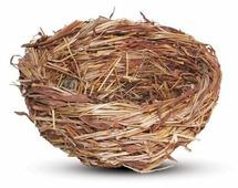 Гнездо Triol PT6185 52011004 12х12х6см