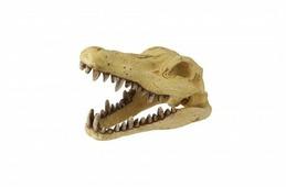 Фигурка для аквариума Europet Bernina Череп динозавра EPB236-406007 22.5х12.5х14 см