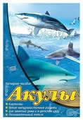 Набор карточек Проф-Пресс Наглядное пособие. Акулы 30x20 см 16 шт.