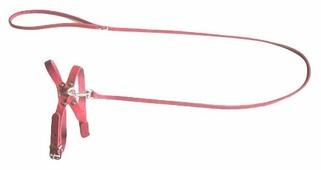 Шлейка с поводком Аркон Стандарт (к8), обхват шеи 24-32 см