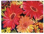 Lanarte Набор для вышивания Очаровательные герберы 25 x 19 см (0162300-PN)